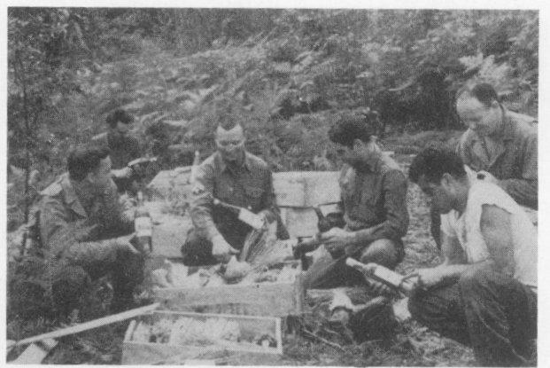 La Division Trains de la 6th Armored Division fait étape à LORRIS - Septembre 1944 Lorris